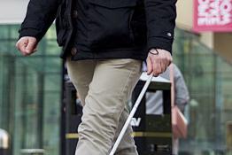 Walking stick in the street