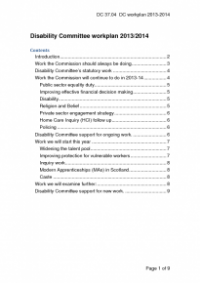 This is the cover of the Disability Committee workplan 2013 to 2014 publication