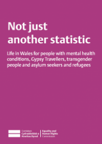 This is the cover of Not just another statistic publication